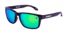 POLISHED BLACK / GREEN IRIDIUM POLARIZED / GREEN EXTRA ARM